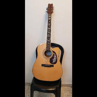 גיטרה-מוגברת-מצויינת - יד 2