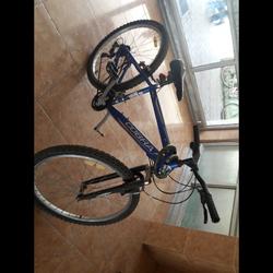 אופני-הרים-COBRA-חסר-פדל-אבל-הם-במצב-מצוין-